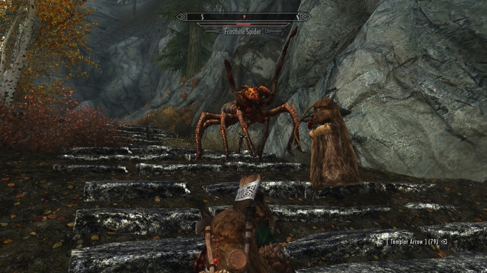 Wild mountain SPIDERS? Really?!