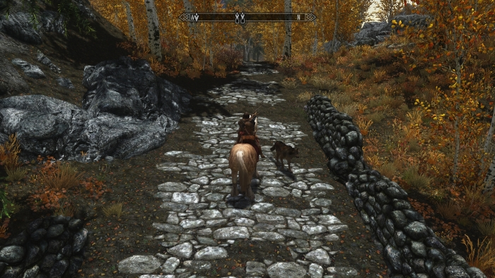 An oddly friendly canine. Hopefully Skyrim doesn't have rabies.