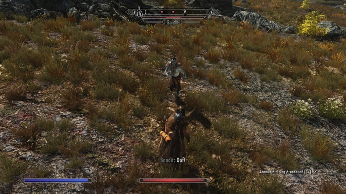 Hello. My name is Morien the Dragonborn. You killed my wolf buddy. Prepare to die.