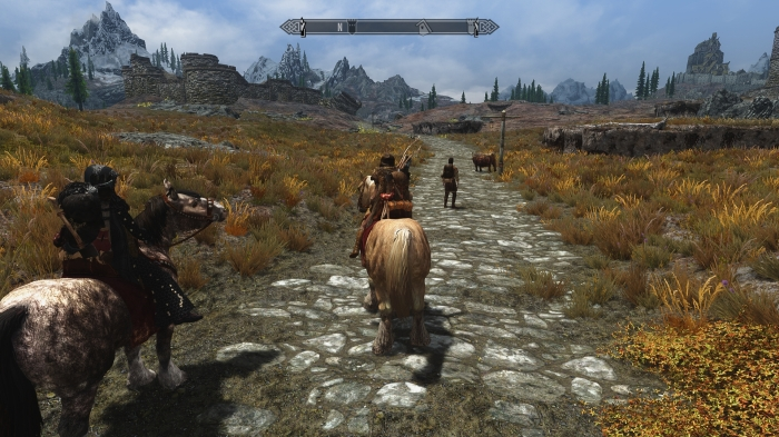 Rush hour in Skyrim.
